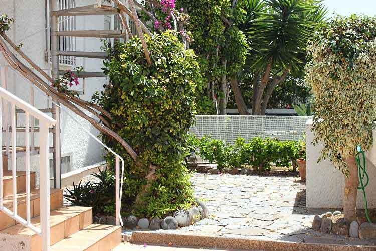 Teneriffa, Immobilie, Apartment mit 1 Schlafzimmer, total neu renoviert - Apartment mit 1 Schlafzimmer, grosse Terrasse und Dachterrasse