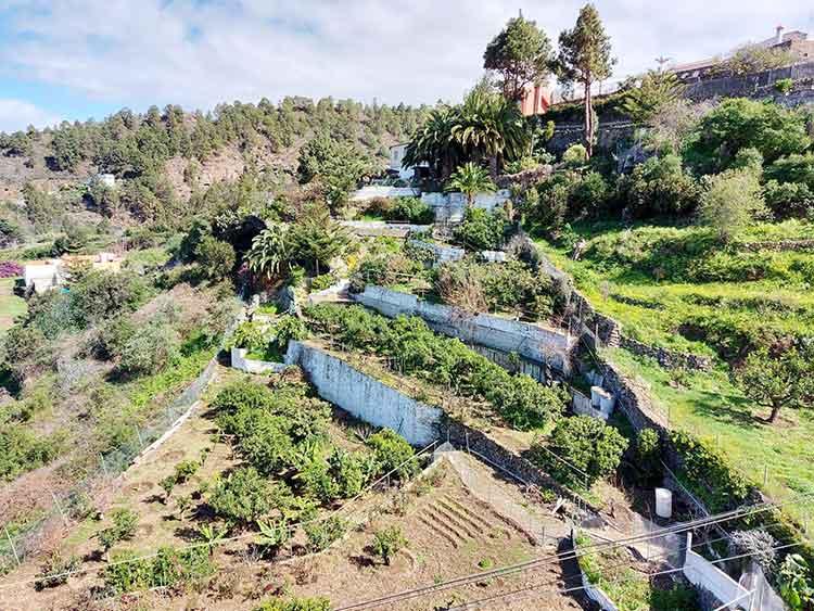 Finca mit vier Schlafzimmern und grossem Grundstück